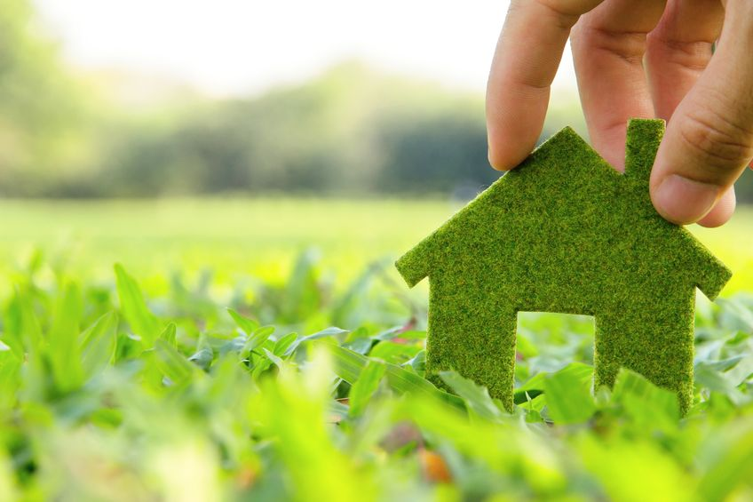 Building an environmentally sustainable lifestyle
